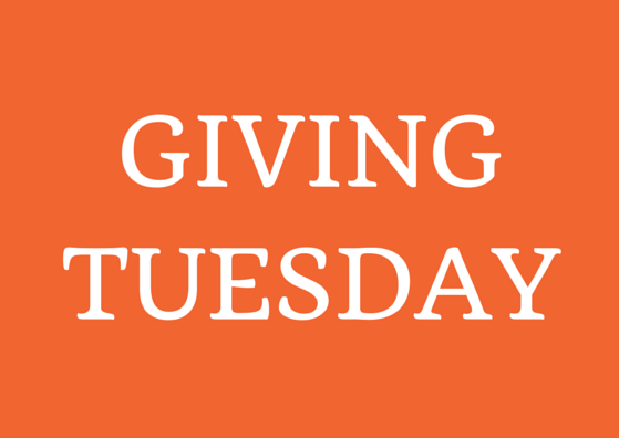 Ask for donations before Giving Tuesday